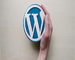 Einführungskurs in WordPress